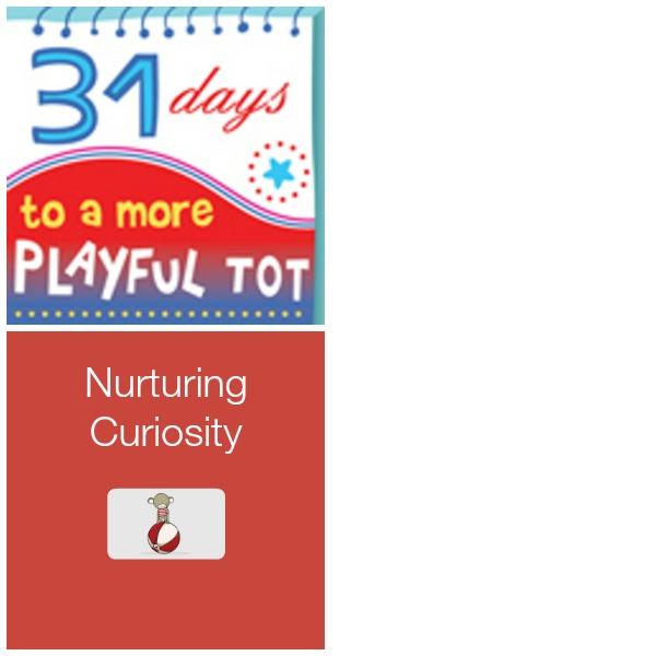 Nurturing Curiosity